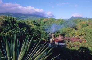 Martinique - Macouba - Rhum J.M.